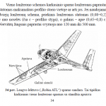 Lonzeronu tipai2 150x150 - pamoka_nr_4